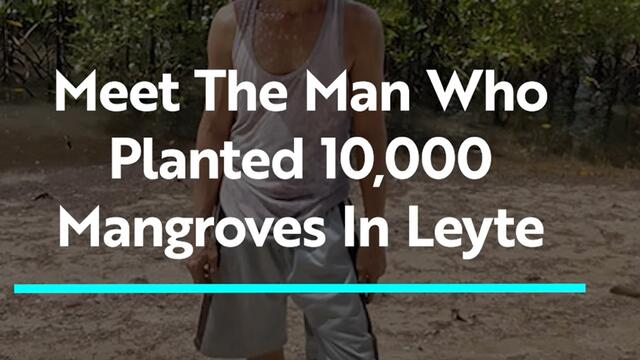 Meet the Man Who Planted More Than 10,000 Mangroves in Leyte