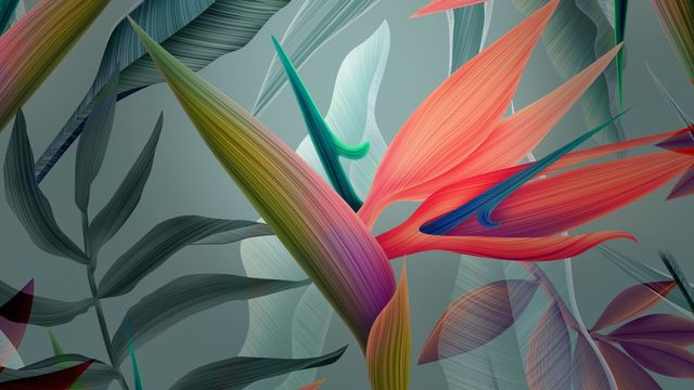 •⊰✿⊱•  Стрелиция  ... (Bird Of Paradise - Flower)  •⊰✿⊱•